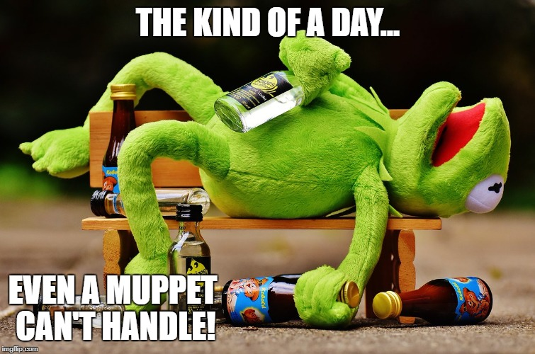 The Kind of a Day | THE KIND OF A DAY... EVEN A MUPPET CAN'T HANDLE! | image tagged in kermit the frog,muppets,funny | made w/ Imgflip meme maker
