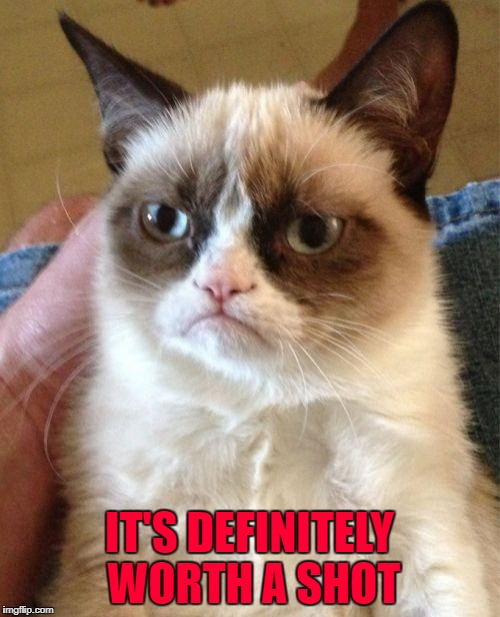 Grumpy Cat Meme | IT'S DEFINITELY WORTH A SHOT | image tagged in memes,grumpy cat | made w/ Imgflip meme maker