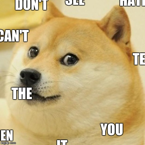 Doge Meme | DON'T HATE IT WHEN YOU CAN'T SEE THE TEXT? | image tagged in memes,doge,don't you hate it | made w/ Imgflip meme maker