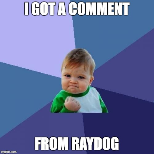 Success Kid Meme | I GOT A COMMENT FROM RAYDOG | image tagged in memes,success kid | made w/ Imgflip meme maker