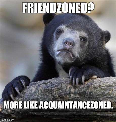 Confession Bear Meme | FRIENDZONED? MORE LIKE ACQUAINTANCEZONED. | image tagged in memes,confession bear | made w/ Imgflip meme maker
