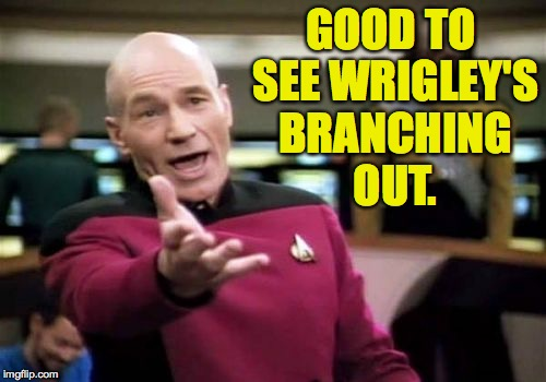 Picard Wtf Meme | GOOD TO SEE WRIGLEY'S BRANCHING OUT. | image tagged in memes,picard wtf | made w/ Imgflip meme maker