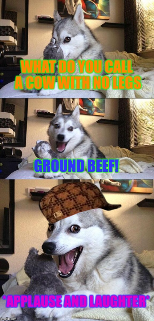 Bad Pun Dog Meme | WHAT DO YOU CALL A COW WITH NO LEGS GROUND BEEF! *APPLAUSE AND LAUGHTER* | image tagged in memes,bad pun dog,scumbag | made w/ Imgflip meme maker