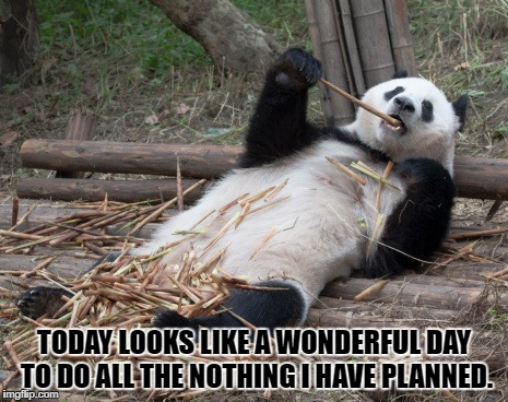 TODAY LOOKS LIKE A WONDERFUL DAY TO DO ALL THE NOTHING I HAVE PLANNED. | image tagged in lazy,funny,funny memes,memes,work | made w/ Imgflip meme maker