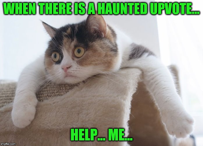 WHEN THERE IS A HAUNTED UPVOTE... HELP... ME... | made w/ Imgflip meme maker