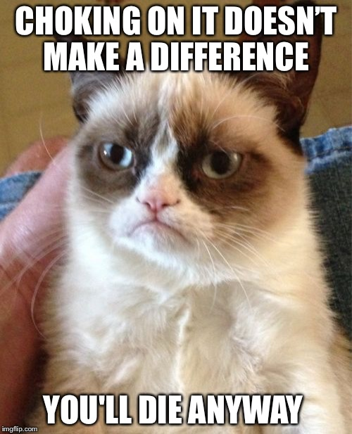 Grumpy Cat Meme | CHOKING ON IT DOESN'T MAKE A DIFFERENCE YOU'LL DIE ANYWAY | image tagged in memes,grumpy cat | made w/ Imgflip meme maker