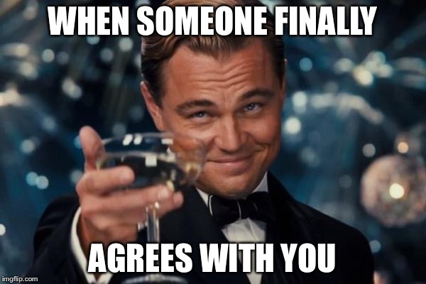 Leonardo Dicaprio Cheers Meme | WHEN SOMEONE FINALLY AGREES WITH YOU | image tagged in memes,leonardo dicaprio cheers | made w/ Imgflip meme maker
