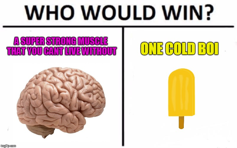 sssssuuuuper  | A SUPER STRONG MUSCLE THAT YOU CANT LIVE WITHOUT ONE COLD BOI | image tagged in memes,who would win,funny,brain,popcicle | made w/ Imgflip meme maker