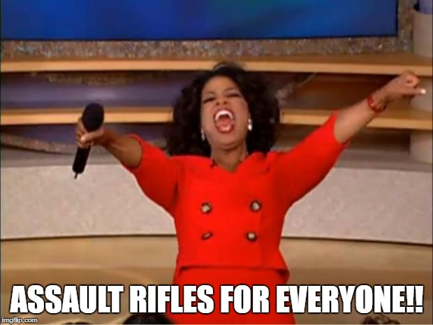 Oprah You Get A Meme | ASSAULT RIFLES FOR EVERYONE!! | image tagged in memes,oprah you get a | made w/ Imgflip meme maker