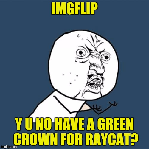 Y U No Meme | IMGFLIP Y U NO HAVE A GREEN CROWN FOR RAYCAT? | image tagged in memes,y u no | made w/ Imgflip meme maker