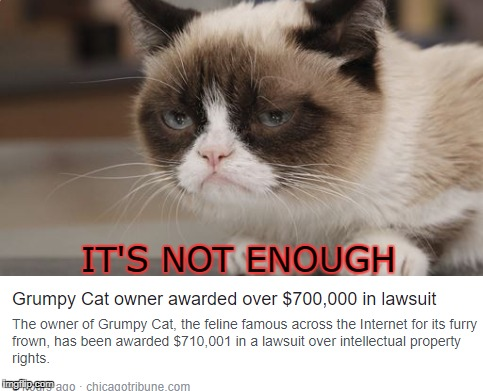 Only Grumpy Cat would be that demanding to have an extra $ | IT'S NOT ENOUGH | image tagged in meme,grumpycat,money | made w/ Imgflip meme maker