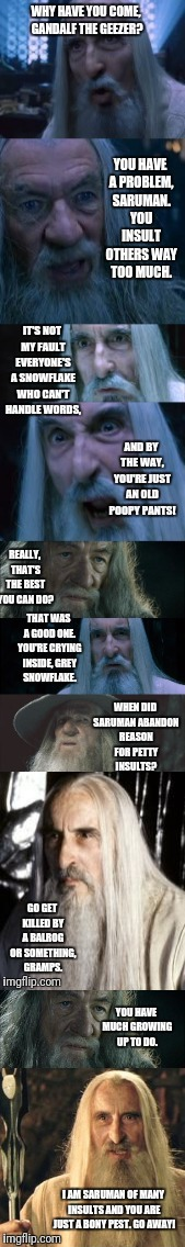 Saruman of Many Insults | YOU HAVE MUCH GROWING UP TO DO. I AM SARUMAN OF MANY INSULTS AND YOU ARE JUST A BONY PEST. GO AWAY! | image tagged in saruman,gandalf,saruman of many insults,lotr,intervention | made w/ Imgflip meme maker