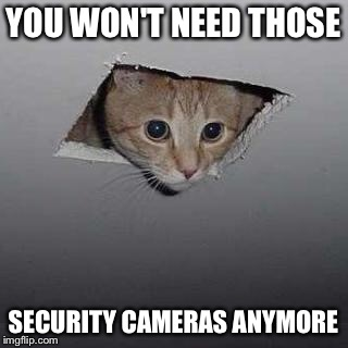 Ceiling Cat | YOU WON'T NEED THOSE SECURITY CAMERAS ANYMORE | image tagged in memes,ceiling cat | made w/ Imgflip meme maker
