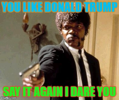 Say That Again I Dare You Meme | YOU LIKE DONALD TRUMP SAY IT AGAIN I DARE YOU | image tagged in memes,say that again i dare you | made w/ Imgflip meme maker
