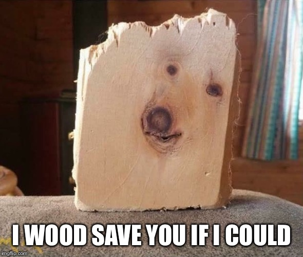 I WOOD SAVE YOU IF I COULD | made w/ Imgflip meme maker