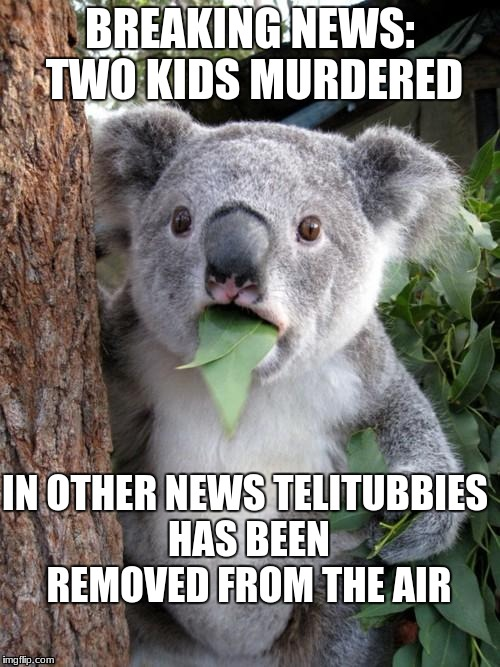 Surprised Koala Meme | BREAKING NEWS: TWO KIDS MURDERED IN OTHER NEWS TELITUBBIES HAS BEEN REMOVED FROM THE AIR | image tagged in memes,surprised koala | made w/ Imgflip meme maker