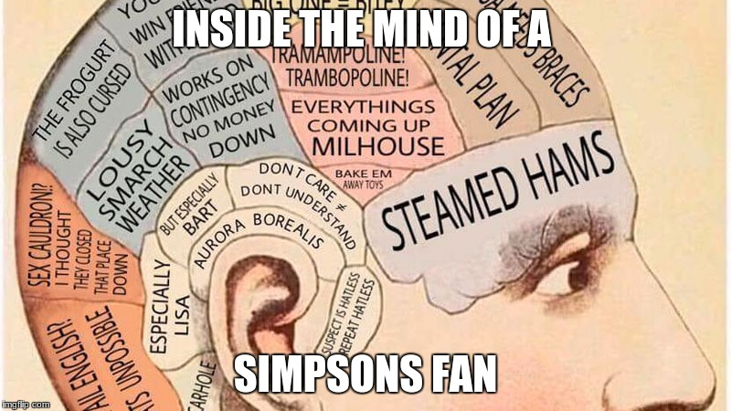 You can't see the crayon because of the caption! | INSIDE THE MIND OF A SIMPSONS FAN | image tagged in funny,memes,the simpsons | made w/ Imgflip meme maker