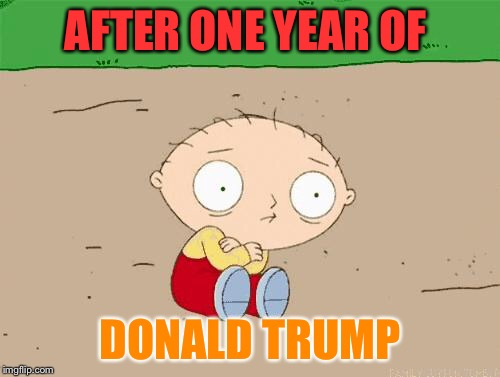 One year of Donald Trumps presidency, and we are still like this.  |  AFTER ONE YEAR OF; DONALD TRUMP | image tagged in family guy,trump,stewie griffin | made w/ Imgflip meme maker
