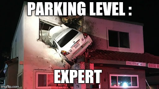 Like a boss  | PARKING LEVEL : EXPERT | image tagged in memes,car,like a boss,funny | made w/ Imgflip meme maker