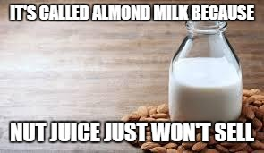 Almond Milk | IT'S CALLED ALMOND MILK BECAUSE NUT JUICE JUST WON'T SELL | image tagged in almond milk | made w/ Imgflip meme maker