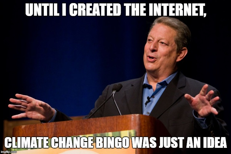 Al Gore | UNTIL I CREATED THE INTERNET, CLIMATE CHANGE BINGO WAS JUST AN IDEA | image tagged in al gore | made w/ Imgflip meme maker