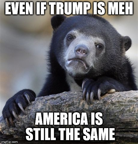 Meh | EVEN IF TRUMP IS MEH AMERICA IS STILL THE SAME | image tagged in memes,confession bear | made w/ Imgflip meme maker