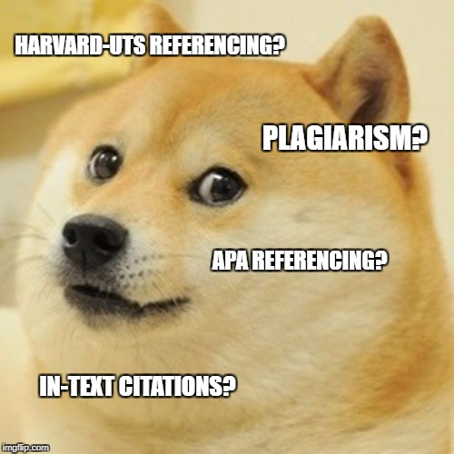 Doge Meme | HARVARD-UTS REFERENCING? PLAGIARISM? APA REFERENCING? IN-TEXT CITATIONS? | image tagged in memes,doge | made w/ Imgflip meme maker