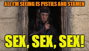 ALL I'M SEEING IS PISTILS AND STAMEN SEX, SEX, SEX! | made w/ Imgflip meme maker