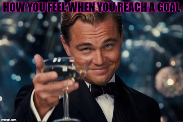 Leonardo Dicaprio Cheers Meme | HOW YOU FEEL WHEN YOU REACH A GOAL | image tagged in memes,leonardo dicaprio cheers | made w/ Imgflip meme maker