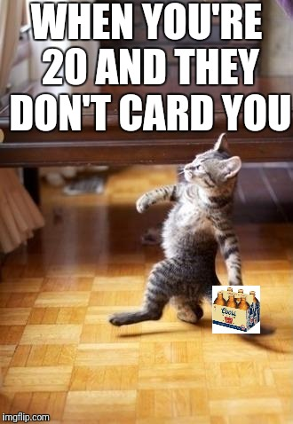 Cool Cat Stroll Meme | WHEN YOU'RE 20 AND THEY DON'T CARD YOU | image tagged in memes,cool cat stroll | made w/ Imgflip meme maker