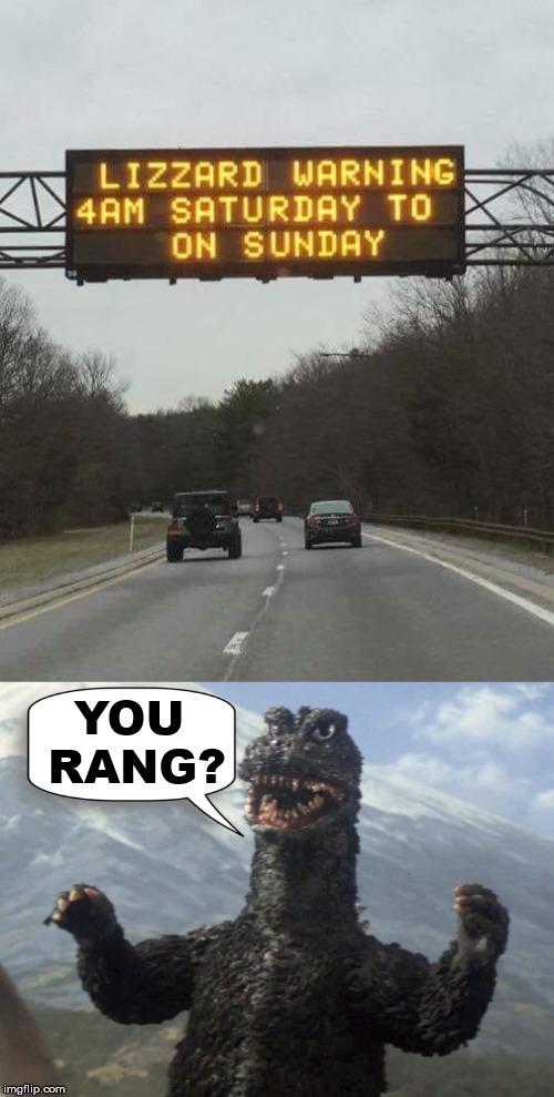 spelling is important | YOU RANG? | image tagged in warning sign,blizzard warning,godzilla | made w/ Imgflip meme maker