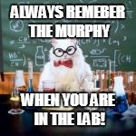 ALWAYS REMEBER THE MURPHY WHEN YOU ARE IN THE LAB! | made w/ Imgflip meme maker