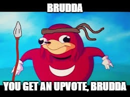 BRUDDA YOU GET AN UPVOTE, BRUDDA | made w/ Imgflip meme maker