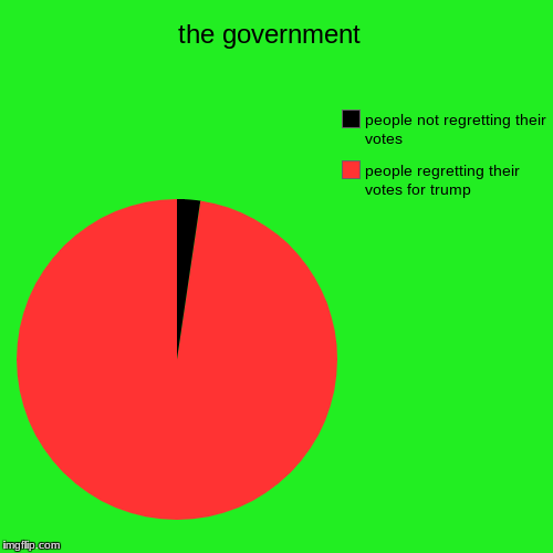 the government  | people regretting their votes for trump, people not regretting their votes | image tagged in funny,pie charts | made w/ Imgflip pie chart maker