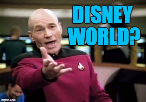 Picard Wtf Meme | DISNEY WORLD? | image tagged in memes,picard wtf | made w/ Imgflip meme maker