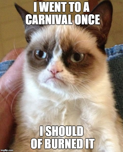 Grumpy Cat Meme | I WENT TO A CARNIVAL ONCE I SHOULD OF BURNED IT | image tagged in memes,grumpy cat | made w/ Imgflip meme maker