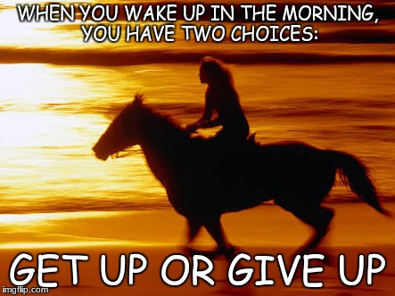 WHEN YOU WAKE UP IN THE MORNING, YOU HAVE TWO CHOICES: GET UP OR GIVE UP | image tagged in horse and sunset | made w/ Imgflip meme maker