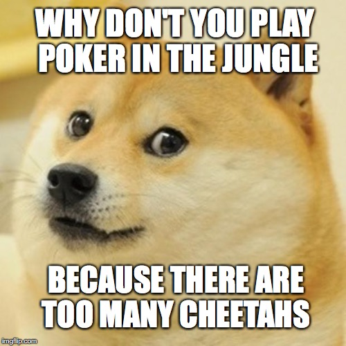Doge Meme | WHY DON'T YOU PLAY POKER IN THE JUNGLE BECAUSE THERE ARE TOO MANY CHEETAHS | image tagged in memes,doge | made w/ Imgflip meme maker