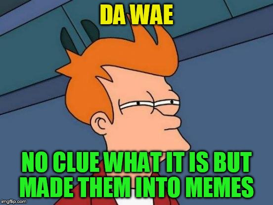 Futurama Fry Meme | DA WAE NO CLUE WHAT IT IS BUT MADE THEM INTO MEMES | image tagged in memes,futurama fry | made w/ Imgflip meme maker