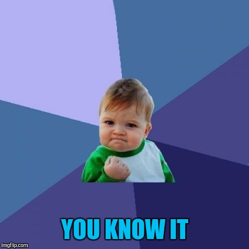 Success Kid Meme | YOU KNOW IT | image tagged in memes,success kid | made w/ Imgflip meme maker