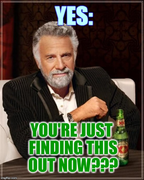 The Most Interesting Man In The World Meme | YES: YOU'RE JUST FINDING THIS OUT NOW??? | image tagged in memes,the most interesting man in the world | made w/ Imgflip meme maker