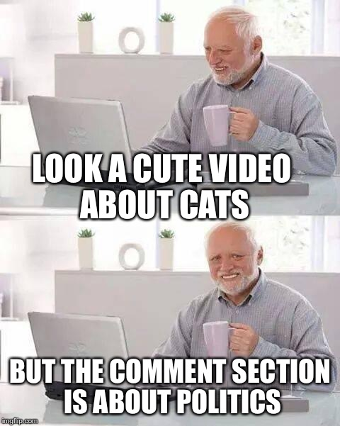 Hide the Pain Harold Meme | LOOK A CUTE VIDEO ABOUT CATS BUT THE COMMENT SECTION IS ABOUT POLITICS | image tagged in memes,hide the pain harold | made w/ Imgflip meme maker