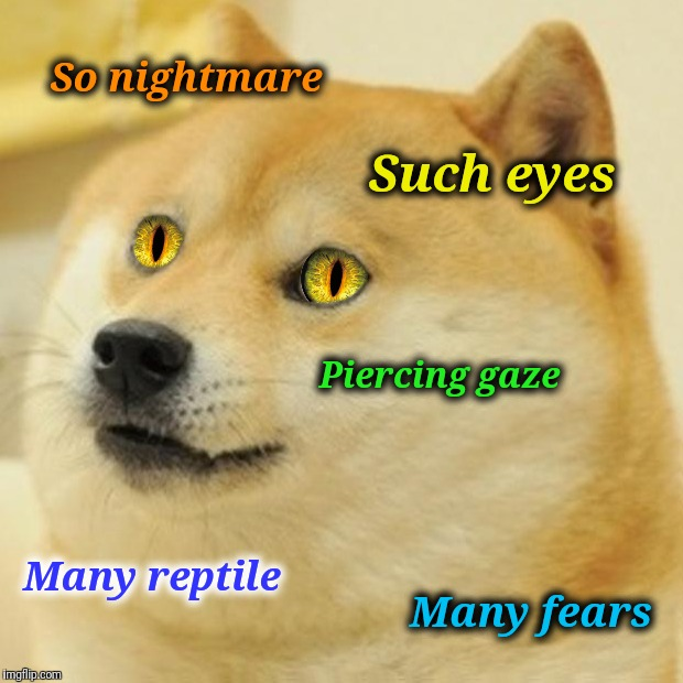 Snake Eye Doge is watching you sleep | So nightmare Such eyes Piercing gaze Many reptile Many fears | image tagged in doge,snake eyes,nightmare,dreams,sleep | made w/ Imgflip meme maker