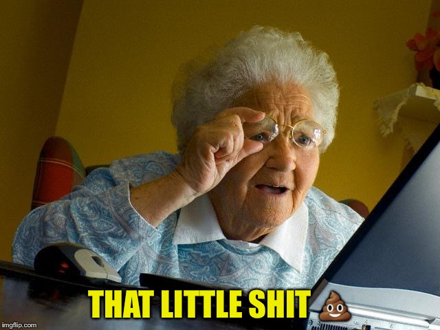 Grandma Finds The Internet Meme | THAT LITTLE SHIT  | image tagged in memes,grandma finds the internet | made w/ Imgflip meme maker