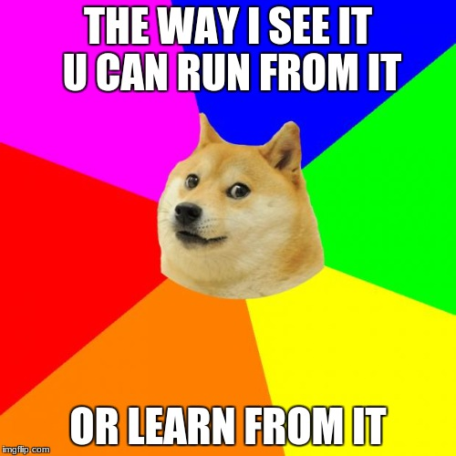 Advice Doge | THE WAY I SEE IT U CAN RUN FROM IT OR LEARN FROM IT | image tagged in memes,advice doge | made w/ Imgflip meme maker