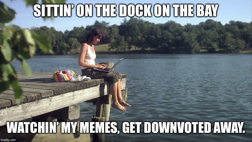 Safe space from Trolls? | SITTIN' ON THE DOCK ON THE BAY WATCHIN' MY MEMES, GET DOWNVOTED AWAY. | image tagged in memes,otis redding,dock,downvoted,funny meme,drsarcasm | made w/ Imgflip meme maker