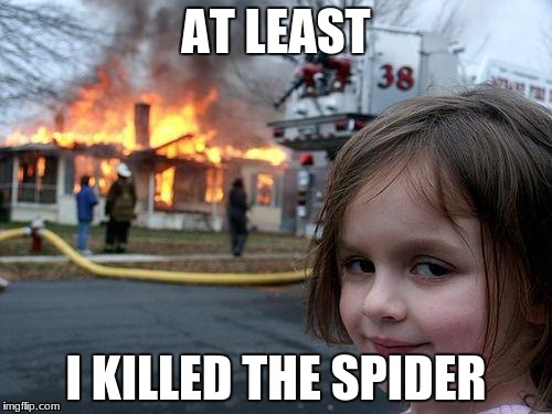 Disaster Girl Meme | AT LEAST I KILLED THE SPIDER | image tagged in memes,disaster girl | made w/ Imgflip meme maker