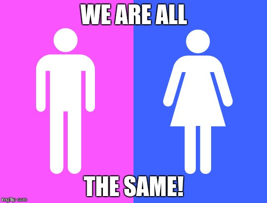 WE ARE ALL THE SAME! | image tagged in gender | made w/ Imgflip meme maker
