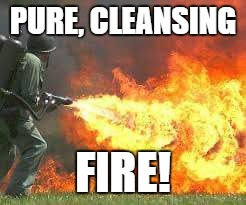 Pure Cleansing Fire 001 | PURE, CLEANSING FIRE! | image tagged in boing,poing,zip,frank zappa | made w/ Imgflip meme maker
