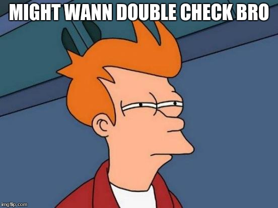 Futurama Fry Meme | MIGHT WANN DOUBLE CHECK BRO | image tagged in memes,futurama fry | made w/ Imgflip meme maker